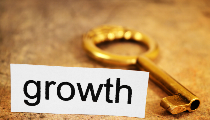 Thinking Like Your Customer_ The Key to Growth