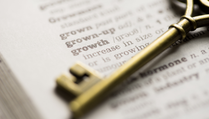 Invoice Factoring as Key to Successful Growth